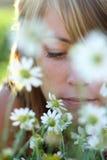запах Стоковые Изображения