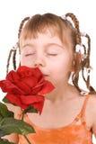 запах Стоковые Фотографии RF
