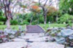 Запачканная дорожка камня предпосылки на воде с цветком лотоса в парке Стоковые Изображения RF