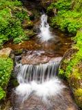 Запачканная деталь потока реки Стоковое Фото