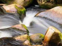 Запачканная деталь потока реки Стоковые Фото