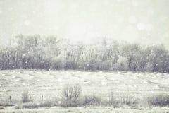 Запачканная зима предпосылки Стоковое фото RF