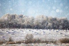 Запачканная зима предпосылки Стоковая Фотография