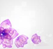 Запачканная конспектом предпосылка цветка Стоковые Изображения RF