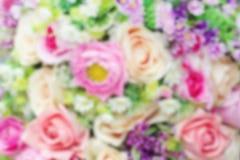 Запачканная предпосылка розового цветка красочная мягкая, цветок абстрактной нежности розовый для карточки свадьбы или предпосылк Стоковое Изображение