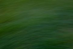 Запачканная предпосылка зеленой травы Стоковые Фотографии RF