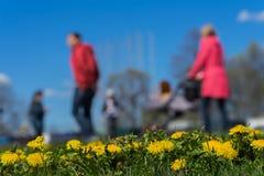 Запачканная предпосылка молодой семьи с детьми, pram в парке, весеннем сезоне, луге зеленой травы На переднем плане, яркий Стоковые Изображения RF
