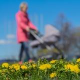 Запачканная предпосылка молодых женщин с детьми в pram, парке, весеннем сезоне, луге зеленой травы и ярких желтых детенышах Стоковая Фотография