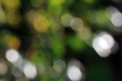 запачканная предпосылка Стоковая Фотография RF