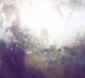 Запачканное абстрактное фото света разрывало среди деревьев и светов bokeh яркого блеска фильтрованное изображение и текстурирова стоковая фотография