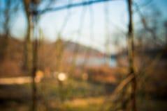 Запачканное озеро Стоковое Фото
