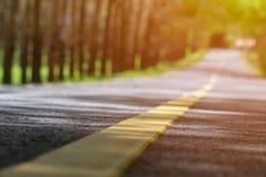 Запачканное сиротливое изображение дороги с теплым солнечным светом Пустые неурожайные естественные места хорошие для сценарных п Стоковая Фотография RF