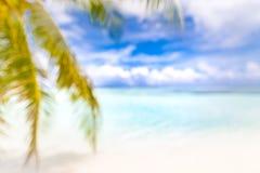 Запачканные лист ладони и тропический пляж Вдохновляющий ландшафт пляжа, тропическое перемещение и концепция летних каникулов стоковая фотография rf