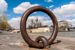 Запачканный взгляд Нотр-Дам Парижа Рекы Сена Стоковое Изображение