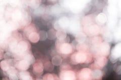 Запачканный всход студии светлой точки Стоковая Фотография