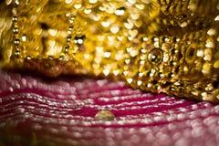 Запачканный пинк и золото Стоковое фото RF