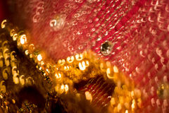 Запачканный пинк и золото Стоковые Фотографии RF