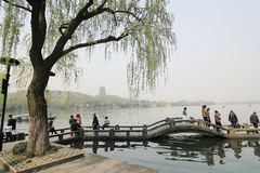 Западное озеро в Ханчжоу, фарфоре Стоковое Фото