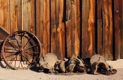 западное одичалое Стоковая Фотография