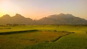 Западное Ghats Индии Стоковые Изображения RF