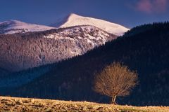 Западное Tatras. стоковое изображение rf