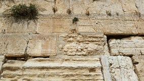 Западный конец стены вверх на камнях, Иерусалиме Стоковая Фотография