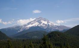 Западный смотрите на клобук Mt и национальный лес Стоковое Фото