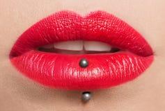 Запальчиво красные губы, фотография макроса Стоковое Изображение RF