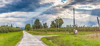 запертая проселочная дорога по пересеченной местностей Стоковые Изображения