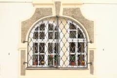 запирает окна Стоковая Фотография RF