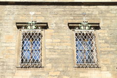 запирает окна Стоковое Изображение RF