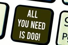 Запись показа всего примечания вам собака Получают, что щенка будет showcasing фото дела животными более счастливых собачьих любо бесплатная иллюстрация