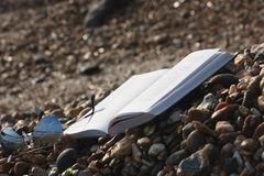 Запишите при солнечные очки лежа на пляже Стоковая Фотография RF