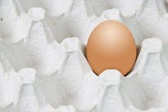 заплата пасхального яйца Стоковое Фото