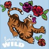 Заплаты вышивки флористические с тигром и розами Стоковые Изображения