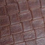 Заплетенная кожа Стоковые Фото