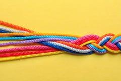 Заплетенные веревочки на предпосылке цвета, взгляд сверху Стоковое Изображение RF