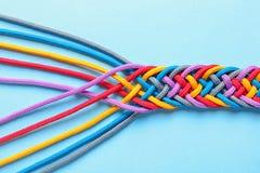 Заплетенные веревочки на предпосылке цвета Стоковые Фото