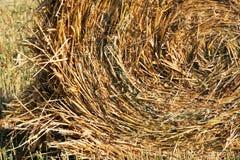 заплетенный плотно haystack пола Стоковые Изображения
