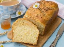 Заплетенный challah бриоши белого хлеба с маковыми семененами Стоковые Фотографии RF