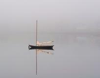 Заплывание баклана парусником Стоковые Изображения