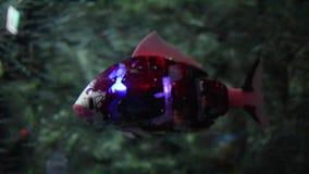 Заплывание рыб робота в аквариуме видеоматериал