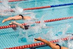 заплывание стоковая фотография rf