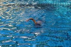 Заплывы мальчика в бассейне стоковые фото