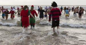 Заплыв моря зимы Стоковые Фотографии RF