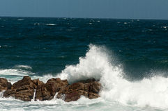 Заповедник Robberg, залив Plettenberg, Южная Африка Стоковое фото RF