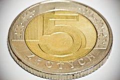 заполированность золотой монетки 5 Стоковое фото RF