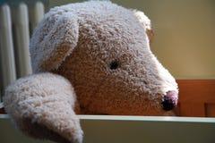 Заполненная игрушка медведя Стоковое Фото
