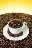заполненная кофейная чашка фасолей зажаренной в духовке Стоковые Фотографии RF