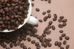 заполненная кофейная чашка фасолей Стоковые Фото